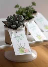 succulent wedding favors diy succulent wedding favors the elli