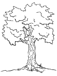 Tree Coloring Pages Free To Print Coloringstar Tree Coloring Pages