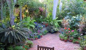 Florida Landscaping Ideas by Garden And Lawn Best Courtyard Garden Designs Tropical