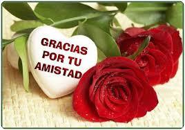bonitas de rosas rojas con frases de amor imagenes de amor facebook variedades de imagenes de rosas hermosas con frases de amor