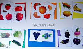 food color sort stay at home educator stay at home educator
