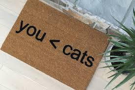 Funny Doormat by Unique Gifts Funny Gifts Funny Doormats Unusual Gifts Gifts