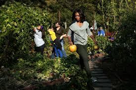roll out vegetable garden trumps have no plans to bulldoze white house veggie garden
