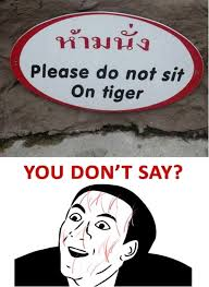 You Dont Say Meme - please do not sit on tiger you dont say meme daily picks and flicks