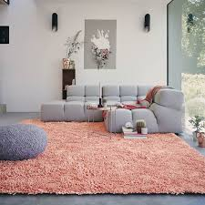 how to feed coral rug editeestrela design