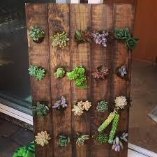 vertical succulent garden made from a wooden wine rack diy diy