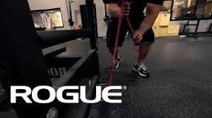 Kelly Starrett Bench Press Rogue Fitness Viyoutube Com
