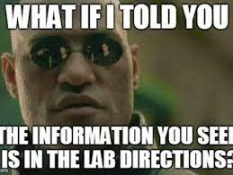 Science Memes - mr langenberger s science domain