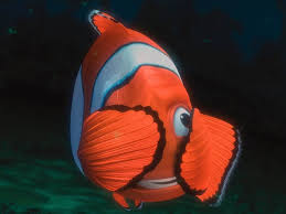 Finding Nemo Light Fish Animated Heroes Marlin