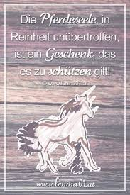 pferdesprüche 217 best pferde sprüche zitate und gedichte quotes images