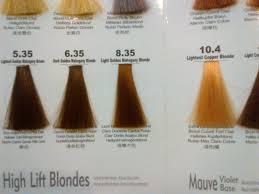 salon hair color prices images hair color ideas