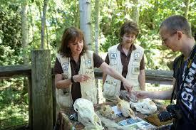 woodland park zoo blog high five zoo volunteers