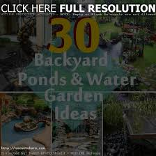 stunning diy backyard pond ideas lawn amp gardendazzling simple