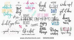 wedding quotes calligraphy lettering photography overlay set motivational quote stock vector