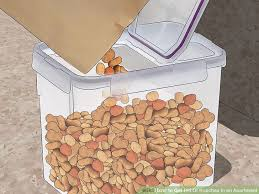 Baby Roaches In Bathroom 4 Ways To Get Rid Of Roaches In An Apartment Wikihow