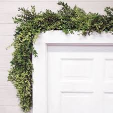 the magnolia company fresh boxwood garland 6 augustgeorges