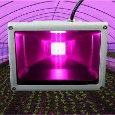 horticultural led grow lights full spectrum 20w led plant grow light flood l led horticulture