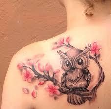 owl sitting on cherry blossom branch on shoulder