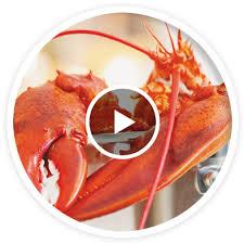 comment cuisiner un homard congelé tout sur le homard ricardo