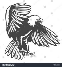 eagle emblem isolated on white vector stock vector 666680245