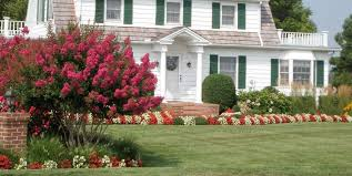 Landscape Mounds Front Yard - lawn grasses for landscaping landscaping network