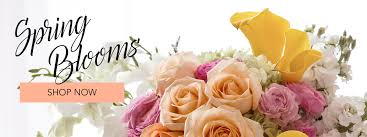 san diego flower delivery san diego florist flower delivery by point loma florist