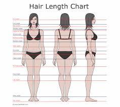 fuscos hair beauty salon glasgow hair length guide
