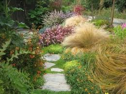 763 best garden grasses images on beautiful