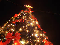 stratford ct tree lighting and more december 2