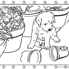 tag pictures cute puppies color puppy coloring book