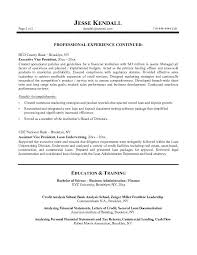 Investment Banker Resume Sample by Free Bank Vp Resume Example