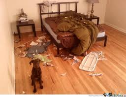 Bad Dog Meme - bad dog by blackmoon meme center