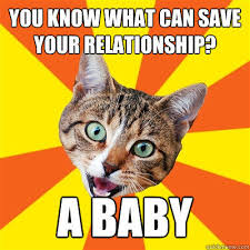 Bad Relationship Memes - you know what can save your relationship a baby bad advice cat