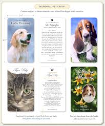 memorial pet cards by memorial prayer cards