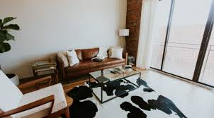 choosing an area rug how to choose an area rug size color pattern maintenance pet