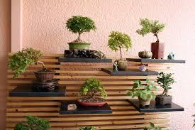 regal balkon bau einer bonsai garagen terrasse bonsai forum de