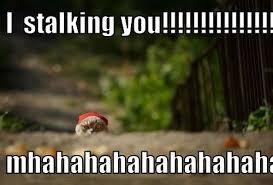 Funny Stalker Memes - stalker imglulz