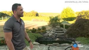 man shocked to find alligator in backyard pond youtube