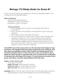 biology 172 study guide for exam 2011 root eukaryotes