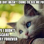 Cat Problems Meme - first world problems cat meme generator imgflip