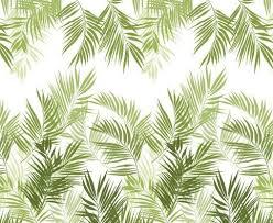 Wallpaper Design Images Best 25 Palm Wallpaper Ideas On Pinterest Tropical Entry