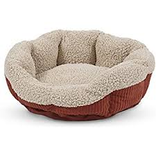 Kitten Bed Amazon Com Mysterious Mini Kitten Kuddler Cat Bed Charcoal