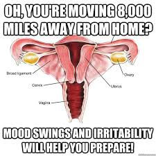 Moving Away Meme - oh you re moving 8 000 miles away from home mood swings and