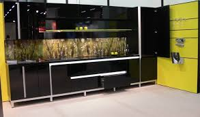 Black Glass Cabinet Doors Glass Front Kitchens