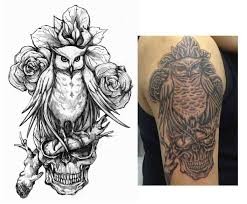 northern spotted owl tattoo sketch photos pictures and sketches