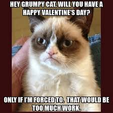 A Happy Valentine Will The by Hey Grumpy Cat Will You Have A Happy Valentine U0027s Day Only If I U0027m