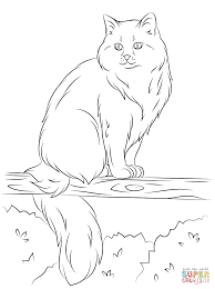 siberian cat sits on a tree coloring page free printable