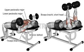 Close Grip Bench Press Benefits What Everyone Ought To Know About The Reverse Grip Bench Press
