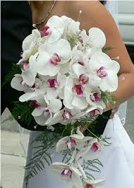 wedding flowers orchids wedding flowers wedding flowers orchids