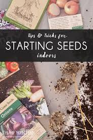 Home Tips And Tricks by Tips And Tricks For Starting Seeds Indoors The Hip Homestead